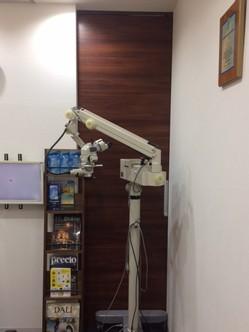 micro111.JPG
